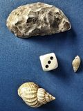 Shells and dice three Stock Image