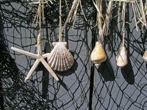 Shells, die an einem Zaun hängen Stockfotografie