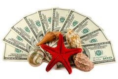 Shells on dollars isolated. Shells and starfish on dollars isolated Stock Photography