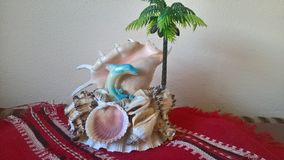 Shells with a dolphin and a palm tree Stock Photos