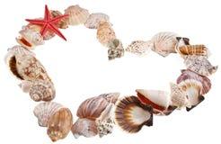 Shells in einer Form des Inneren des Valentinsgrußes Stockfoto