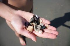 Shells en kiezelstenen Stock Foto