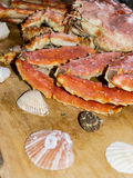 Shells en krab Royalty-vrije Stock Afbeeldingen