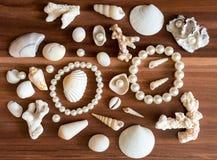 Shells en parels stock afbeeldingen