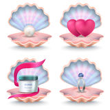 Shells with Face Cream, Pink Hearts, Wedding Ring Royalty Free Stock Image