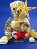 Shells and fish stars Stock Photos