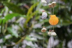 Shells hanging decoration in garden, The colorful shell Royalty Free Stock Image