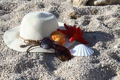 Shells, hat, and sunglass on the beach Stock Image