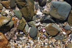 Shells kiezelstenen en rotsen op een strand Stock Foto