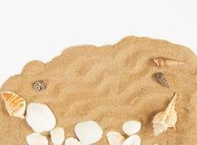 Shells met San Royalty-vrije Stock Afbeeldingen