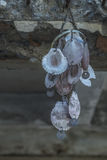 Shells mobile hanging Royalty Free Stock Image