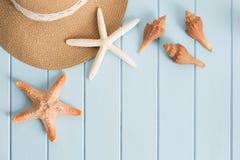 Shells op de houten vloer van het blauw Stock Foto's