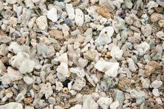 Shells op het oceaanstrand, achtergrond Royalty-vrije Stock Foto