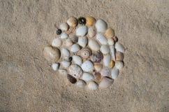 Shells op het strand, vakantiegeheugen royalty-vrije stock afbeeldingen