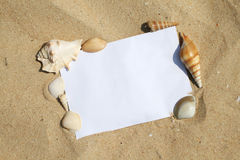 Shells on paper frame Stock Photos