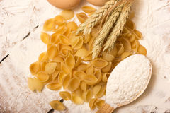 Shells pasta Royalty Free Stock Photography