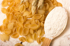 Shells pasta Stock Photos