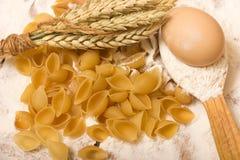 Shells pasta Royalty Free Stock Image