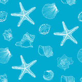 Shells pattern Stock Photo