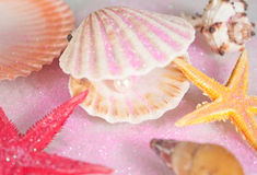 Shells and pearl. Beautiful pearl in seashell and starfish close up Stock Photo