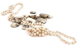 Shells and pearls. Isolated against white background royalty free stock photo
