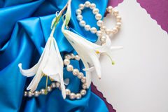 Shells and pearls Royalty Free Stock Photos