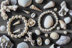 Shells and pearls Royalty Free Stock Images
