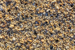 Shells and pebbles on a beach, Boracay Island, Philippines Royalty Free Stock Image
