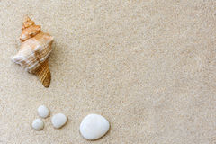 Shells and pebbles on the sand. Stock Photos