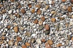 Shingle Beach. Shells and pebbles on a shingle beach stock photos