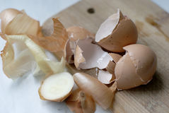 Shells and peel Stock Images