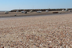 Shells recover the beach in La Bernerie-en-Retz (France) Stock Photo