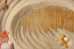 Shells and sand background Royalty Free Stock Photography