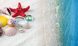 Shells on sand beach stock photo