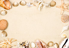 Shells on sand frame Royalty Free Stock Photography