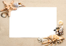 Shells on sand frame stock photos