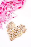 Shells and Scarf of Love Stock Photos