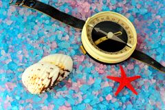 Shells, star and tourist compass on sea salt Royalty Free Stock Image