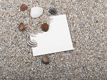 Shells, starfish,blank paper sheet Royalty Free Stock Images