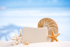 Shells and starfish with blank retro photo on white sand beach, Royalty Free Stock Photo