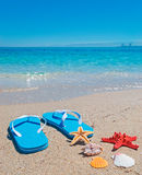 Shells, starfish and flip-flops Stock Photos