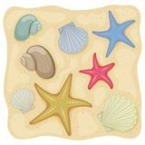 Beach summer holidays. Shells and starfish on on the sand, cartoon illustration. Vector Royalty Free Stock Photography