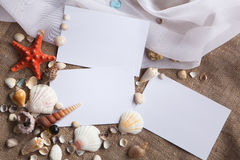 Shells and starfish with white papers. Shells and starfish with three white papers Stock Photography
