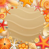 Shells and starfishes on sand background. Royalty Free Stock Image