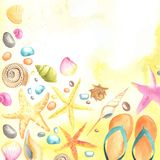 Shells and starfishes on sand background Royalty Free Stock Image