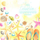 Shells and starfishes on sand background. Stock Photos