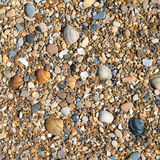 Shells and stones Royalty Free Stock Images