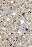 Shells and stones at the  beach Stock Photography