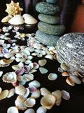 Shells and stones. Sea shells of Different shape and sizes Royalty Free Stock Image