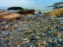 Seascape with shells and stones. Shells and stones on a sea shore Royalty Free Stock Images